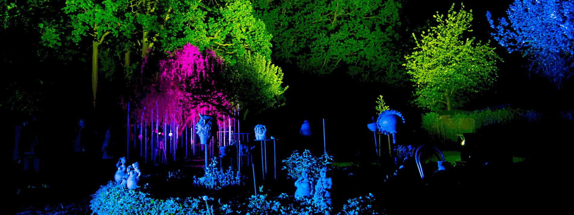 Im Licht der Kunst